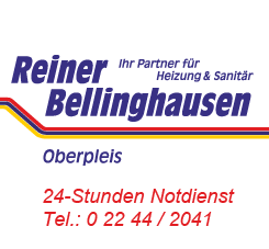 Reiner Bellinghausen